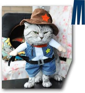 cute cat polyester cowboy wild west costume