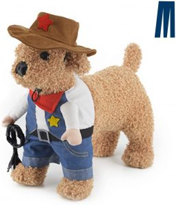 small dog cowboy wild west costume outfit